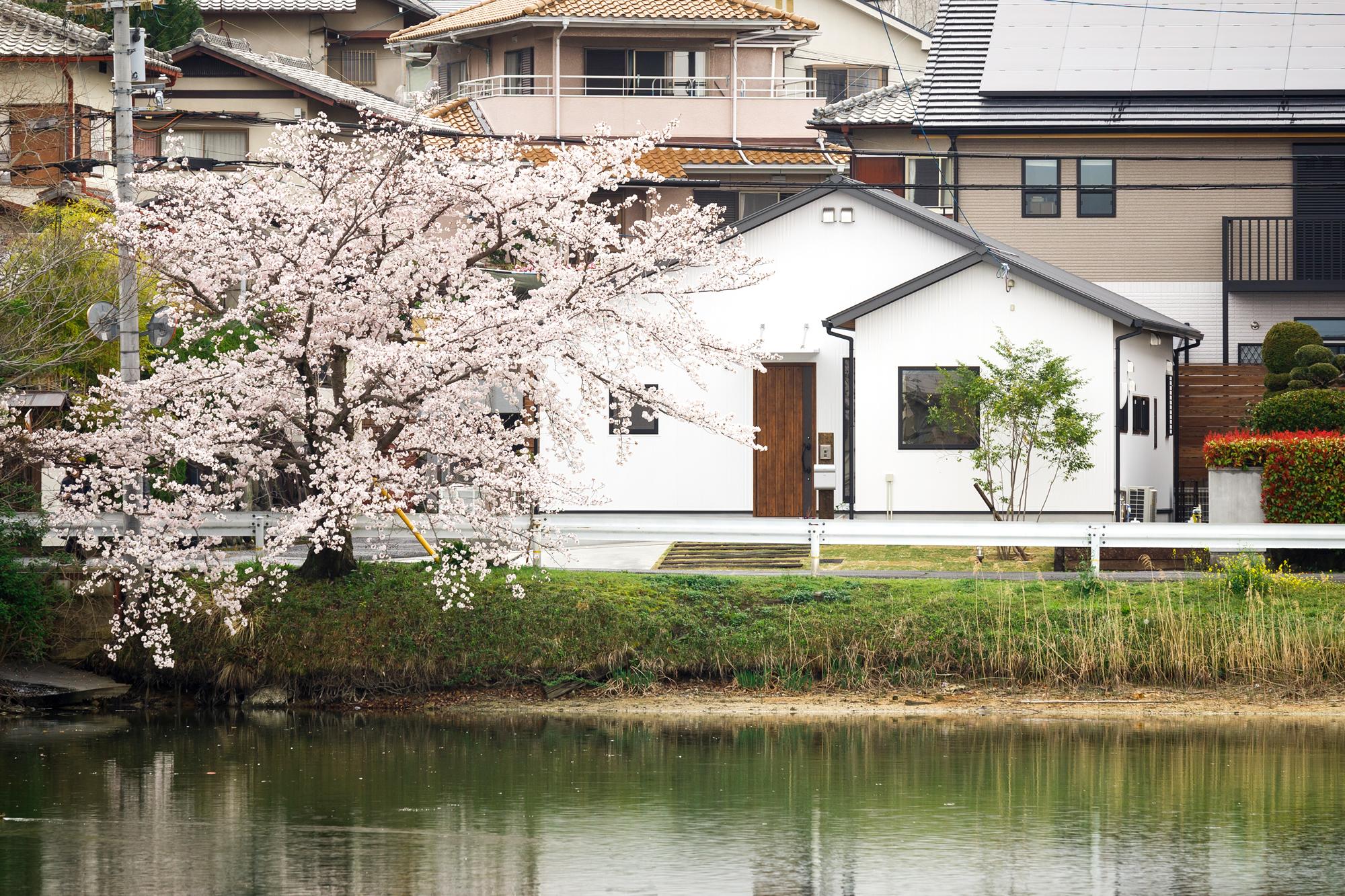 新築施工事例に、「湖畔に佇む白鷺のような平家」を追加しました。